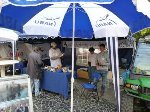 Bauernmarkt 2010