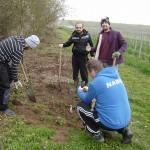Foto: Monika Kröber - Löcher für die Vogelschutzhecke werden gegraben